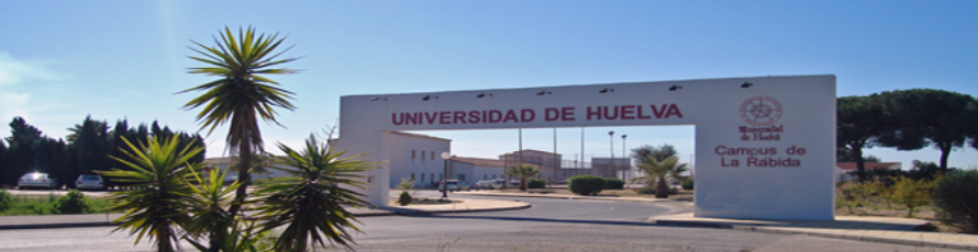 Coordinadora Alfamed Chile de estancia en la Universidad de Huelva
